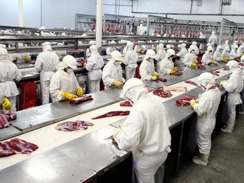 Indústrias de alimentos
